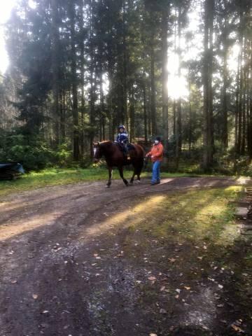 Therapeutisches Reiten der Lebenshilfe Berchtesgadener Land