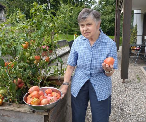 210901_tomaten